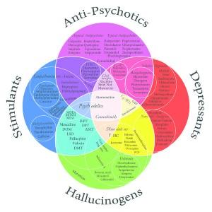 The 7 drug categories